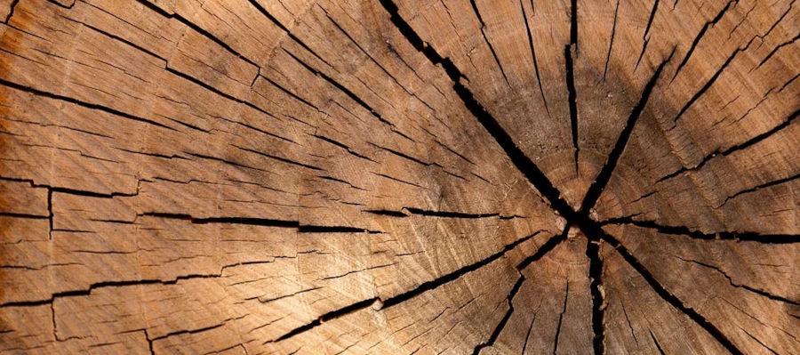 Massivholzmöbel für das eigene Wohlbefinden